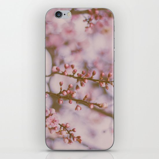 Small & Soft iPhone & iPod Skin