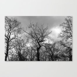 Witchy black and white tree Canvas Print