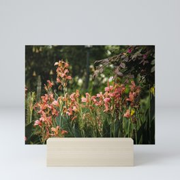 Pretty Colorful Flowers, Plants and Garden Mini Art Print