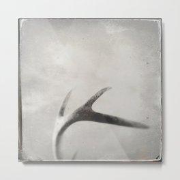 antler tintype Metal Print