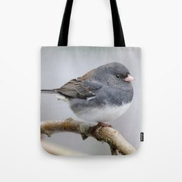 Fluffy Cassiar Dark-Eyed Junco on the Pear Tree Tote Bag