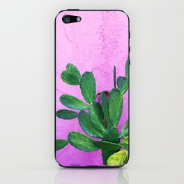 Cactus on Pink Wall iPhone Skin