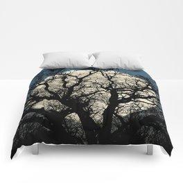 Tree Full Moon Midnight Blue Sky Cottage Decor Art A474 Comforters