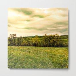 Green Beautiful Meadow Yellow Flowers Metal Print