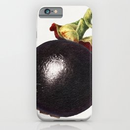 Vintage mangosteen iPhone Case