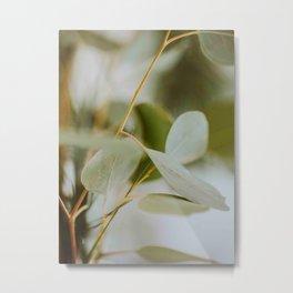Modern MInimalist Nature Photography Close Up Of Mint Green Leaf Natural Organic Shapes Metal Print