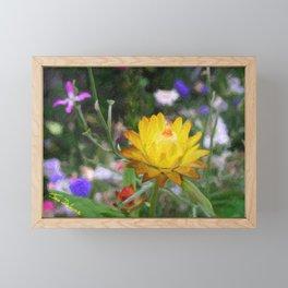 Everlasting Flower Framed Mini Art Print