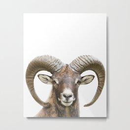 Bighorn Sheep Print by Zouzounio Art Metal Print