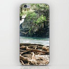 Twin Falls iPhone Skin