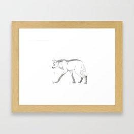 Maned Wolf Framed Art Print