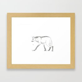 Maned Wolf Framed Art Print