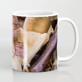 Dry deco mushrooms Coffee Mug