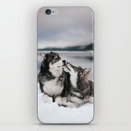 Brotherly Love iPhone Skin