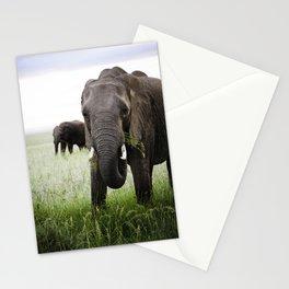 Majestic Elephant at Sunrise Stationery Cards