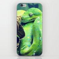 snake iPhone & iPod Skins featuring Snake by Yoshigirl