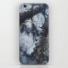 Blue Creek iPhone & iPod Skin