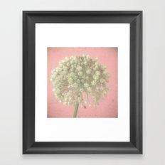 Rose Tinted Framed Art Print