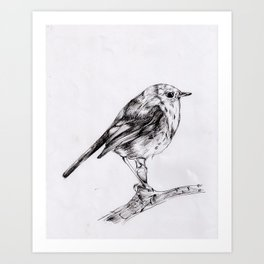 bird drawing iii Art Print