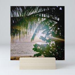 Sun, Palm, and Sea Grape Mini Art Print