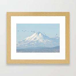 """""""Shasta"""" by Murray Bolesta! Framed Art Print"""