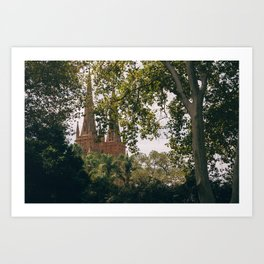 Cathedral through the trees Art Print