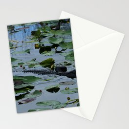 Florida Gator Amongst The Waterlilies Stationery Cards