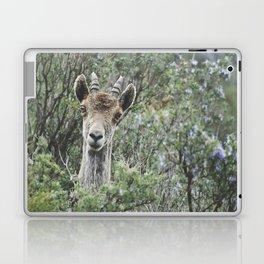 """""""Hello"""". Ibex. Retro wildlife. Laptop & iPad Skin"""