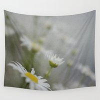 daisy Wall Tapestries featuring Daisy  by Pure Nature Photos