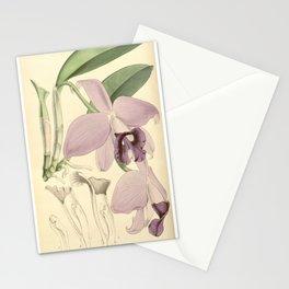 Sophronitis praestans (as Laelia praestans) Curtis' 91 (Ser. 3 no. 21) pl. 5498 (1865) Stationery Cards