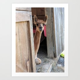 Why Hello! Art Print