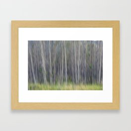 Birch Blurs Framed Art Print