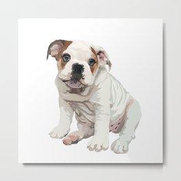 The English Bulldog Metal Print