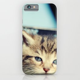 CAT, KATZE iPhone Case