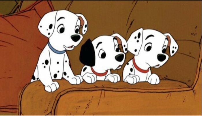 Dalmatians Puppies Pillow Sham