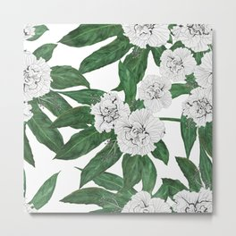 white hibiscus and Japanese Aralia Fatsia japonia leaves Metal Print