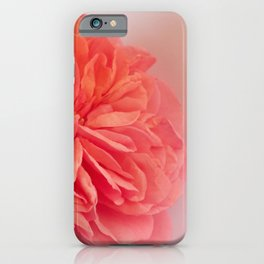 A Touch of Love - Pink Rose #2 #art #society6 iPhone Case