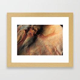 Red Rock Framed Art Print