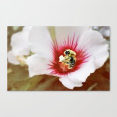 Postponing diet Canvas Print