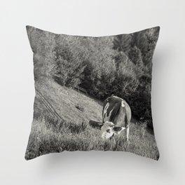 Road trip through E.U. - country side - V Throw Pillow