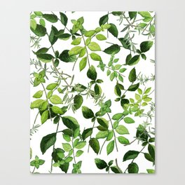 I Never Promised You an Herb Garden Canvas Print