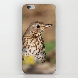 bird mannequin iPhone Skin