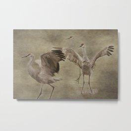 Three Cranes Dancing Metal Print