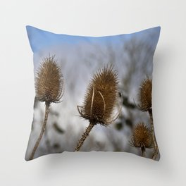 Winter Teasels Throw Pillow