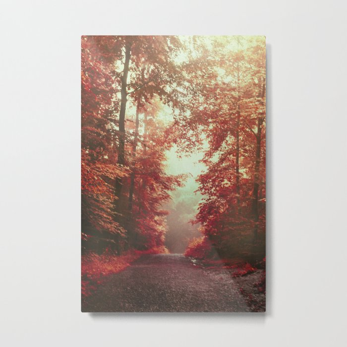 magical redwoods Metal Print