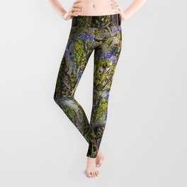 EMERGING BIGLEAF MAPLE IN SPRINGTIME Leggings