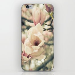 Magnolia Tree Bloom.  Flower Photography iPhone Skin