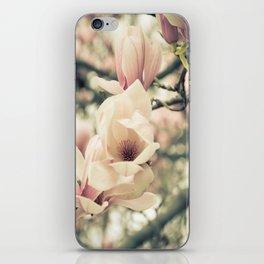 Magnolia Tree Bloom.  Flower Photography iPhone Skin
