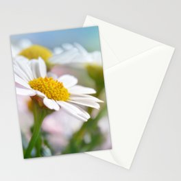 Daisy Flowers 0177 Stationery Cards