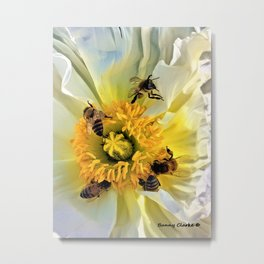 Let Me Be Your Honey Bee Metal Print