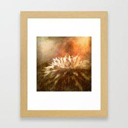 Burning Autumn Flower Framed Art Print